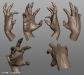 Demonkin_Hand_02